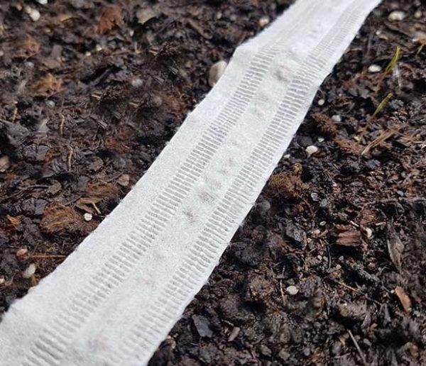 Fabriquez vos propres rubans à graines pour votre potager... avec du papier toilette