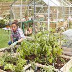 mère et fille qui jardinent dans un grand potager