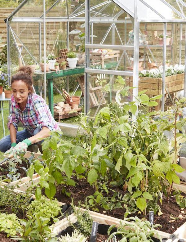 Tout le nécessaire pour cultiver un potager écolo et responsable