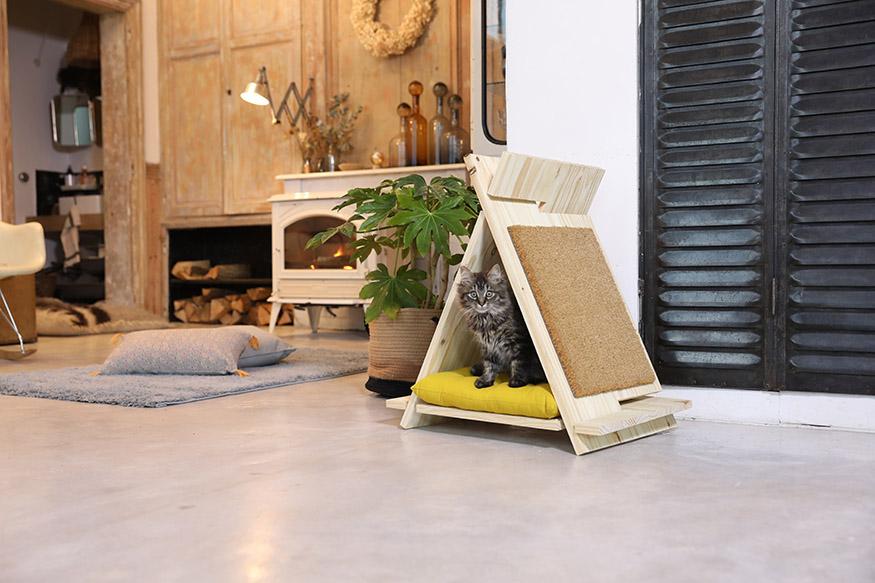 un chat dans un lit tipi DIY