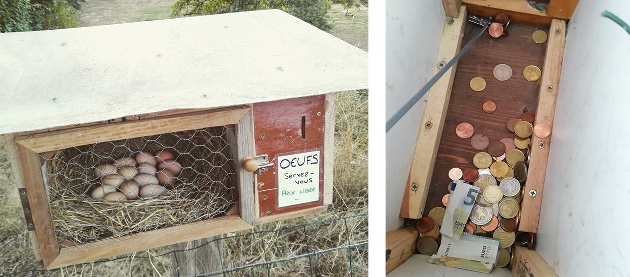 Il installe un distributeur d'oeufs en libre service dans son quartier... et ça marche !