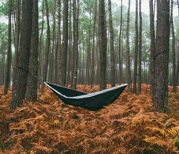 Pourquoi dormir dans les bois nous fait aussi peur ? On a testé pour vous