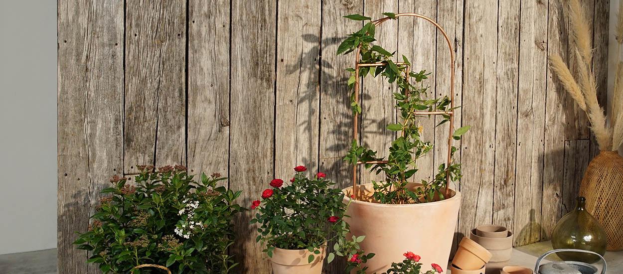 Tuto : Fabriquez un tuteur déco en cuivre pour vos plantes préférées