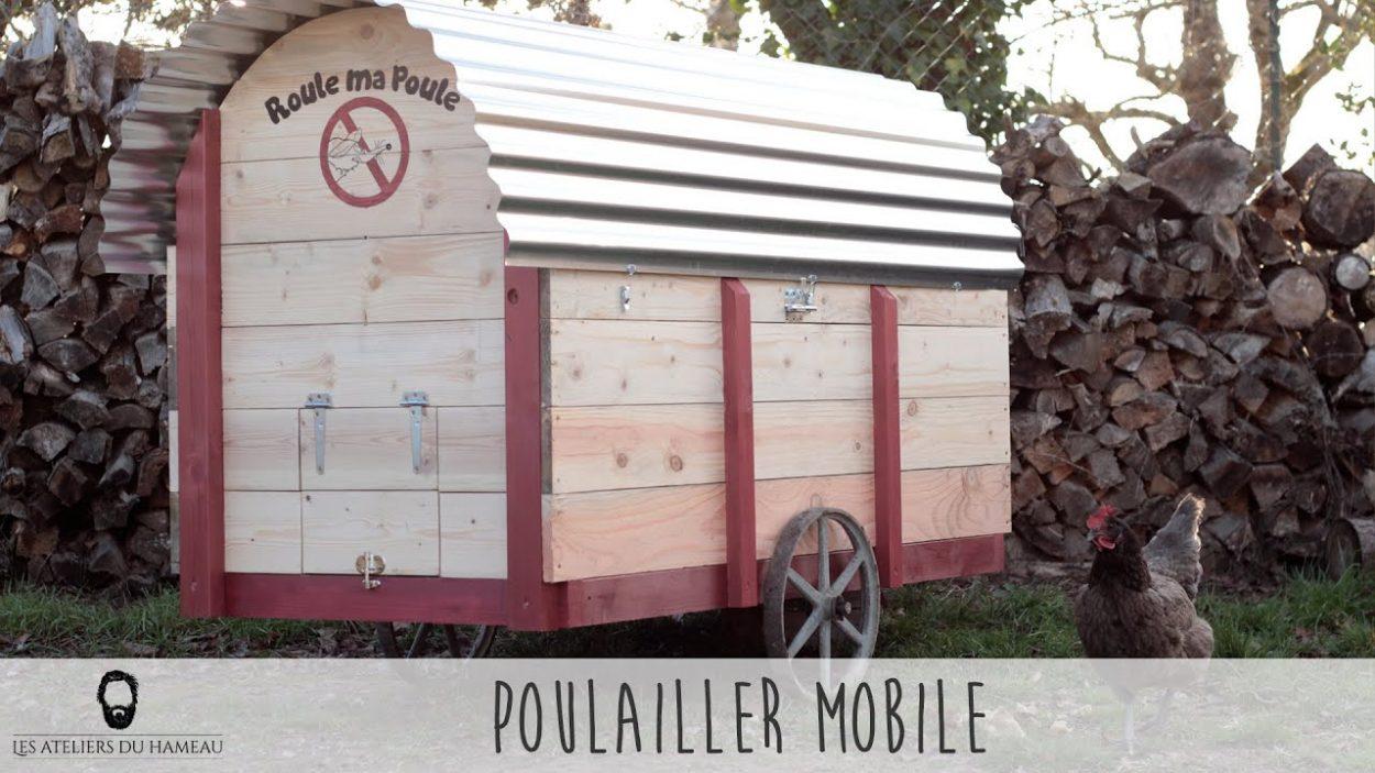 Ils construisent un poulailler mobile pour améliorer le confort de leurs poules