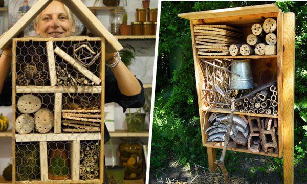 6 tutos d'hôtels à insectes à fabriquer vous-même