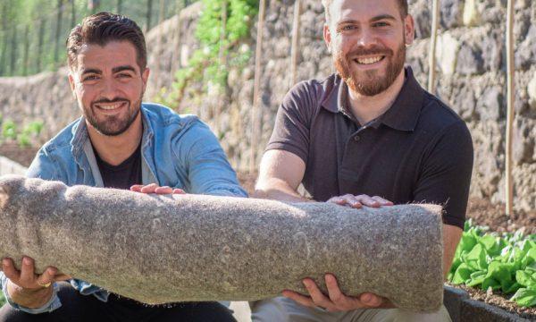 Grâce aux chutes de cheveux, ils créent un tapis de paillage naturel pour un jardin plus écolo
