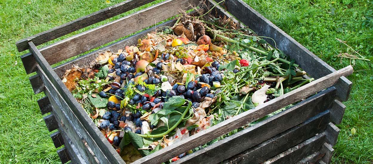 Comment réussir son compost : le guide complet
