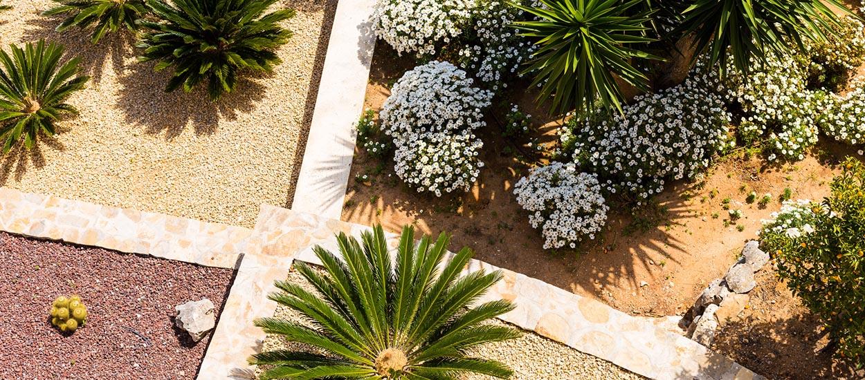 Aménagement extérieur : concevez un jardin sec, économe en eau