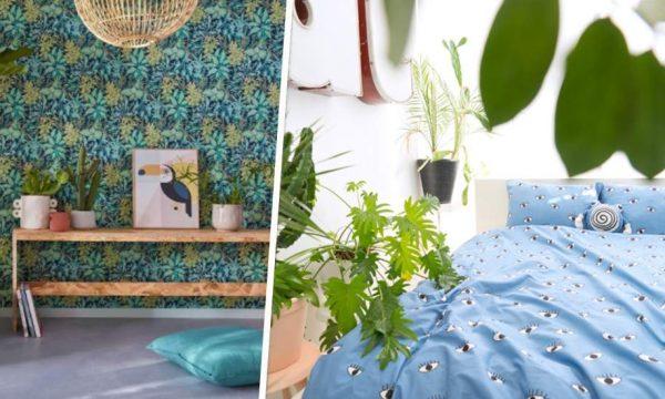 Chambre à coucher : 6 inspirations pour installer des plantes du sol au plafond