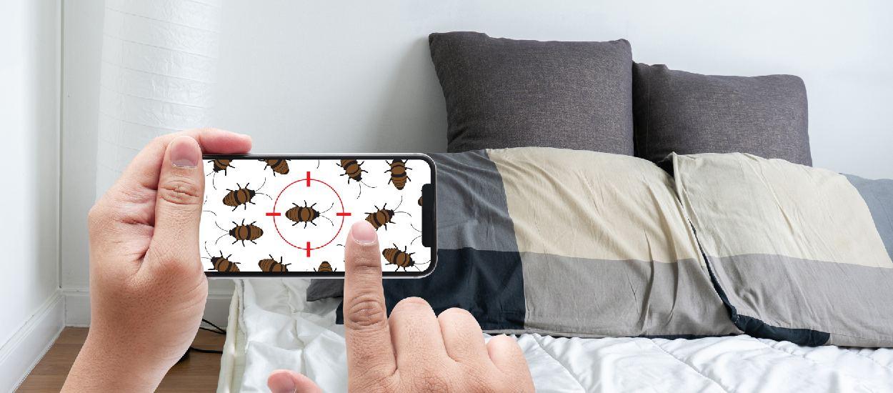 Les méthodes naturelles pour vraiment se débarrasser des punaises de lit