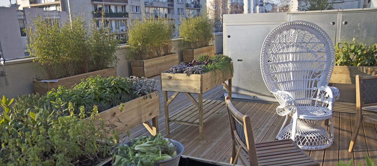 Les fruits et légumes cultivés en ville sont-ils pollués et comment l'éviter ?