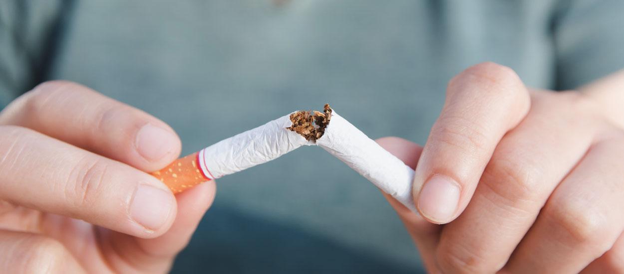Santé de votre animal, environnement... 4 motivations supplémentaires pour arrêter de fumer