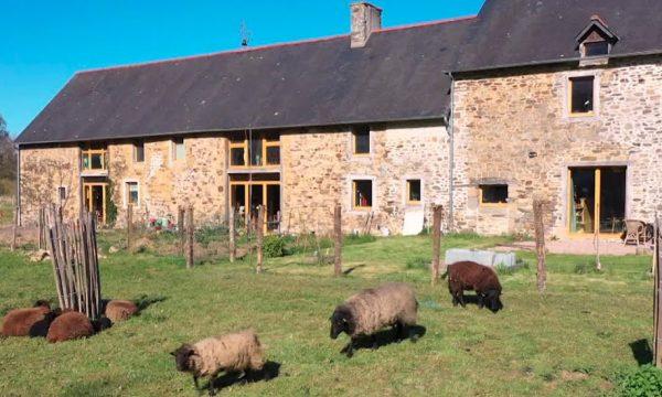 12 amis ont rénové une vieille ferme en Bretagne pour en faire un habitat partagé écolo