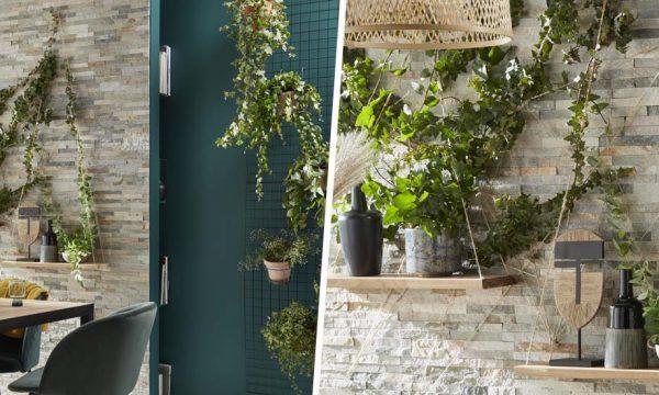 Tuto : Aménagez un mur végétal comme en pleine nature