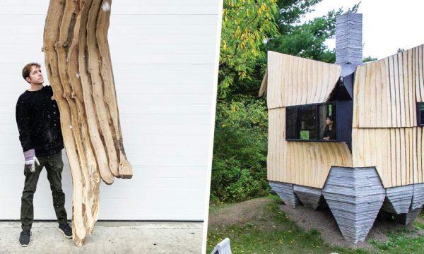 Ces architectes ont trouvé la solution pour construire des maisons avec du bois infesté (au lieu de le brûler)