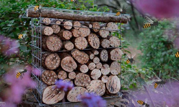 Tuto : Fabriquez un hôtel à abeilles solitaires pour favoriser la pollinisation de votre jardin