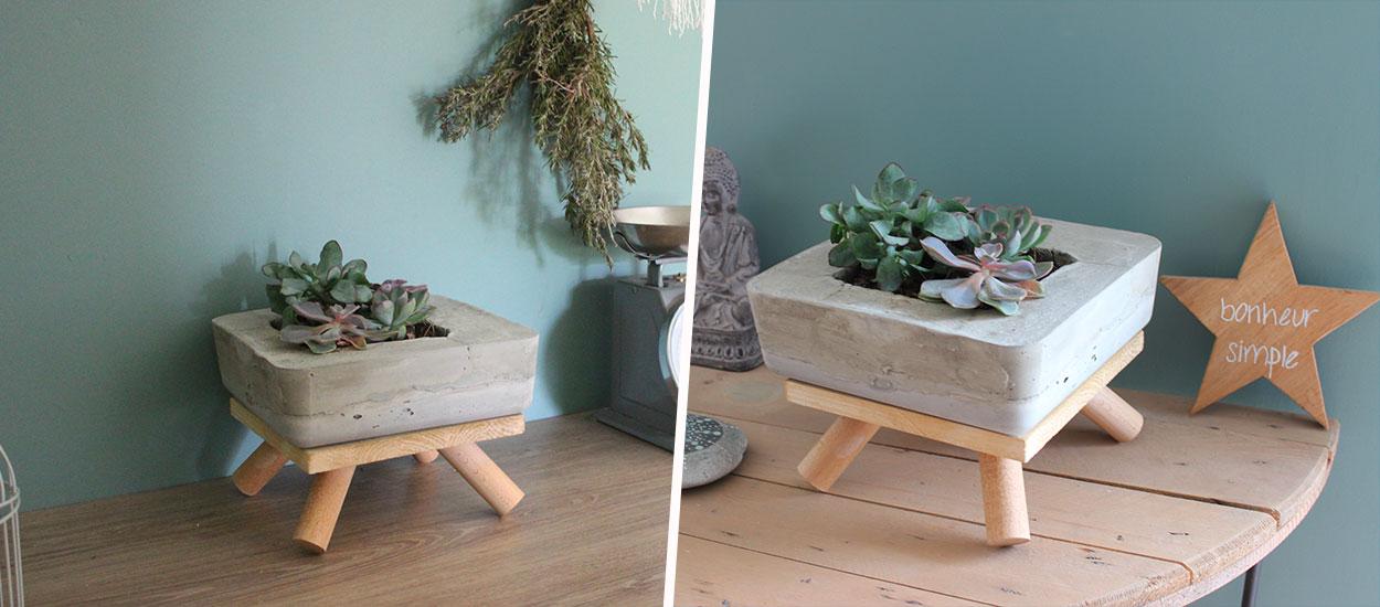Tuto : Fabriquez une jardinière décorative en béton pour vos succulentes