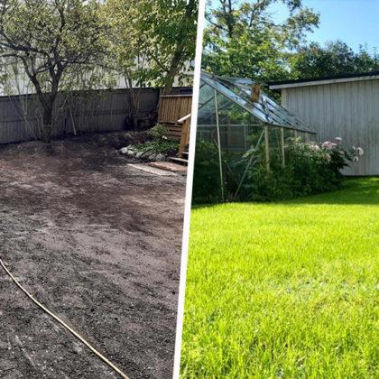 Ces rouleaux de gazon biodégradables et faciles à découper vont changer la vie des jardiniers