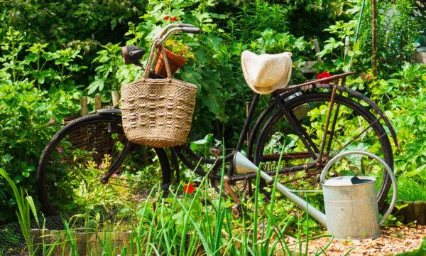 Cette association de jardiniers ne se déplace qu'à vélo pour limiter son impact carbone