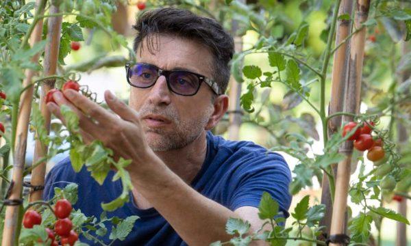 Qu'est-ce qui différencie un potager bio d'un jardin en permaculture ?