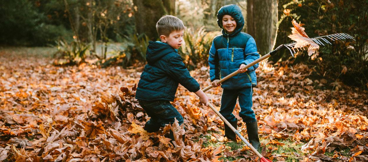 4 étapes incontournables pour entretenir et nettoyer son jardin en automne