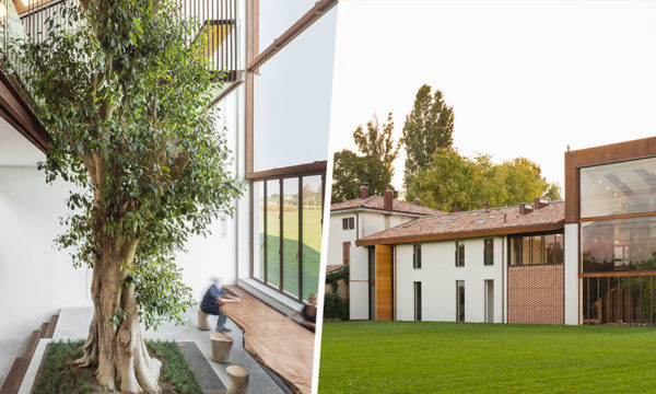 Cette magnifique maison italienne a été construite autour d'un arbre de 10 mètres de haut